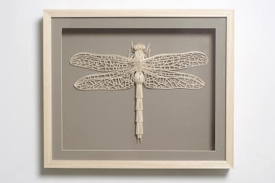 Dragonfly made from matchsticks. Art by Kyle Bean, photo by Owen Silverwood.